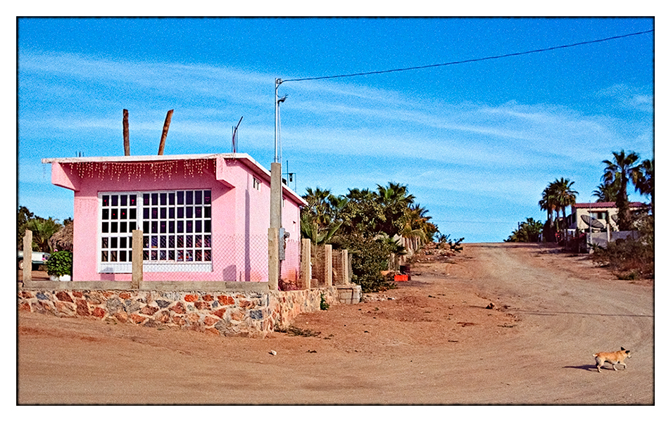 PINK HOUSE, LITTLE DOG // Todos Santos, BCS 2002