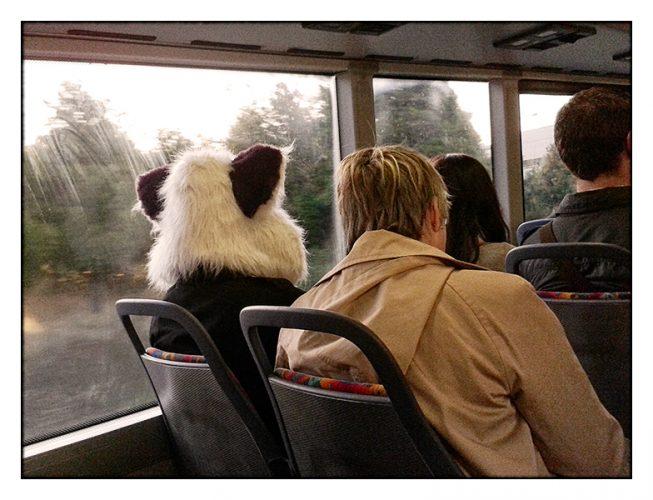 Morning Commute—Victoria